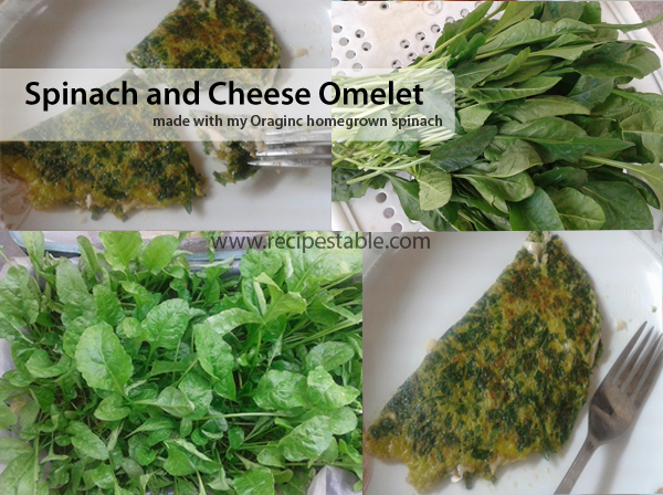 Spinach and Cheese Omelette Recipe